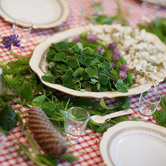 Wildpflanzen auf gedecktem Tisch